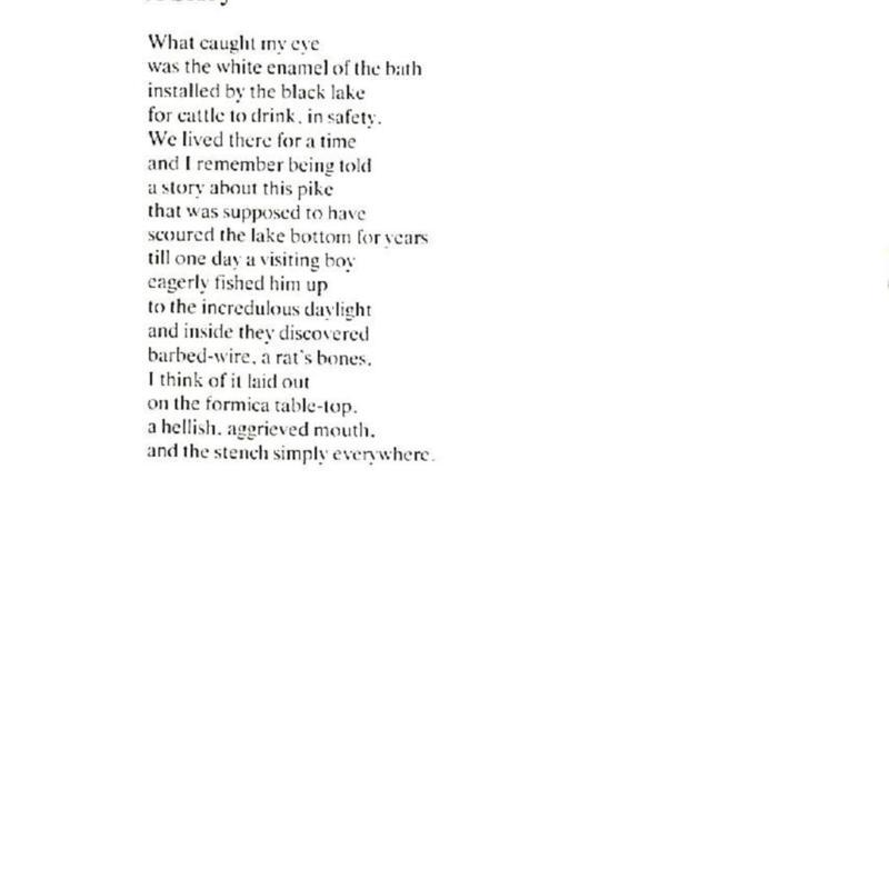 HU Gerald Dawe 90-page-014.jpg
